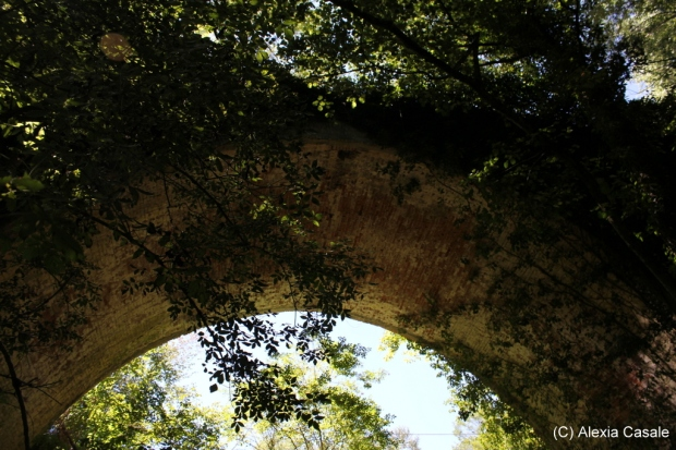 Old brick bridge seen from below